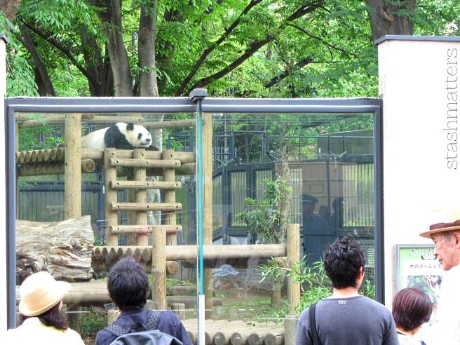 Uneo Park & Zoo