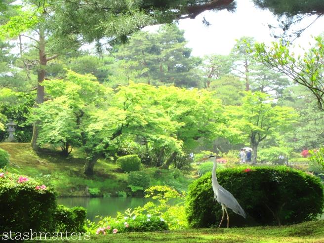 A crane at Kenroku-en Garden